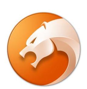 猎豹安全浏览器纯净版官方下载