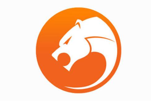 猎豹浏览器官网下载_猎豹浏览器电脑版官方下载,猎豹安全浏览器官网2020最新版下载 ...